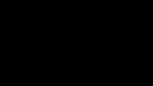 Lite Beer Emblema